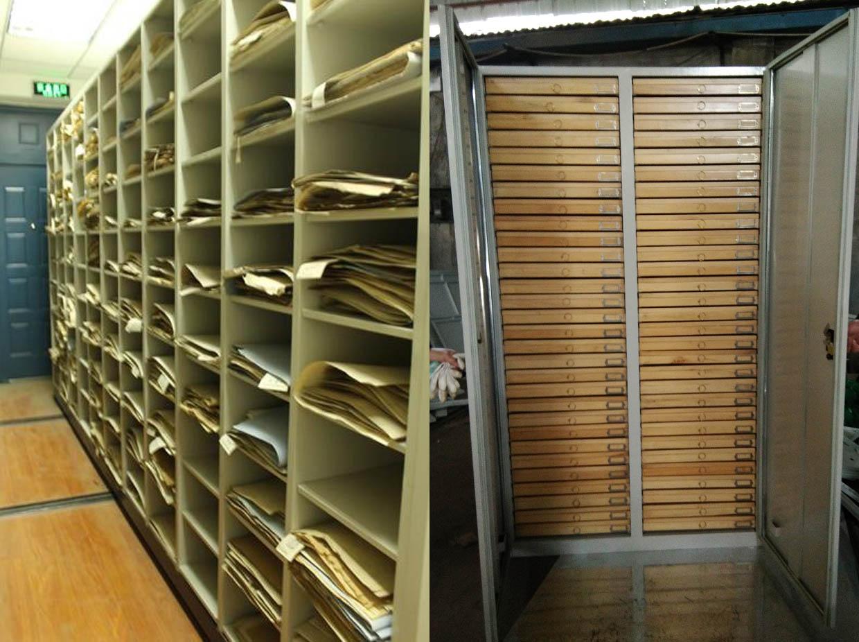 腊叶植物昆虫标本密集柜
